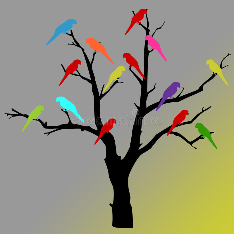 Kleurrijke papegaaien op boom stock afbeeldingen