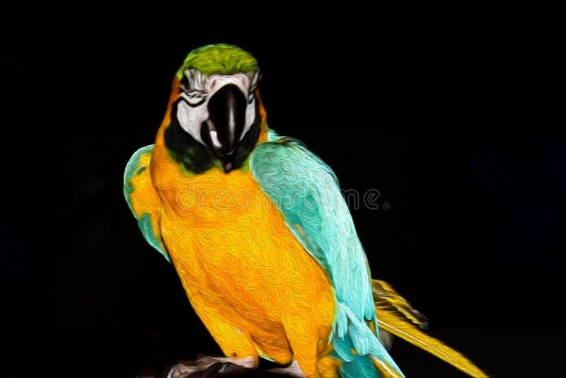 Kleurrijke papegaaikakapo op een tak stock afbeeldingen