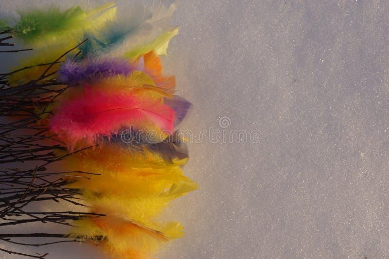 Kleurrijke Pasen-veren op witte sneeuw stock foto