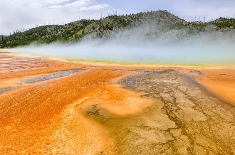 Kleurrijke patronen in algea en de bacteriënlagen van Grand stock afbeeldingen