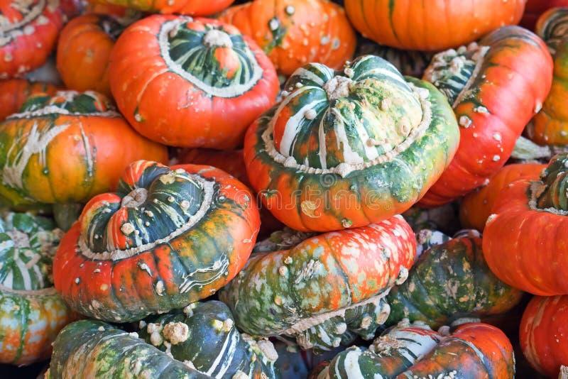 Kleurrijke pompoenen royalty-vrije stock foto