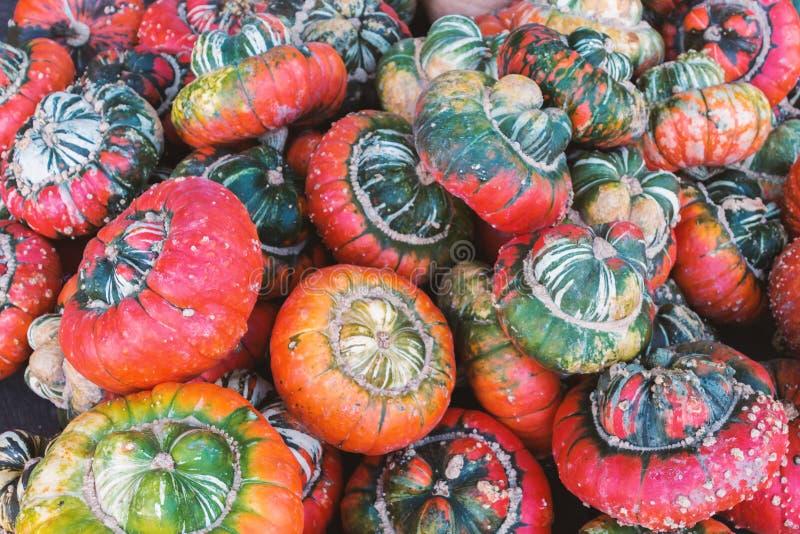 Kleurrijke pompoenen stock afbeelding
