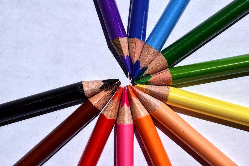 Kleurrijke potloden in een cirkel op grijze achtergrond stock afbeeldingen
