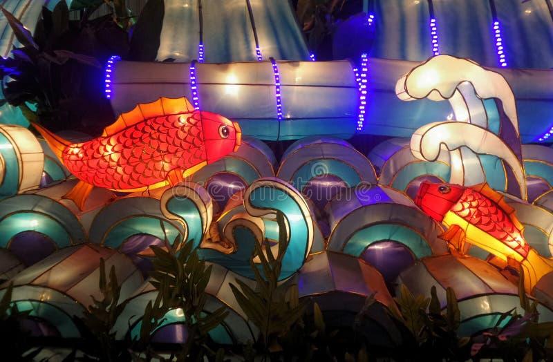 Kleurrijke rode vissenlantaarn stock foto
