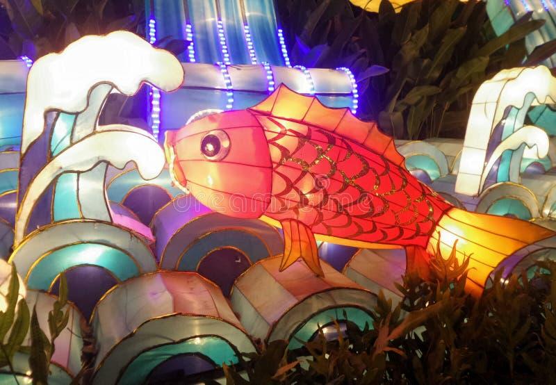 Kleurrijke rode vissenlantaarn stock afbeeldingen