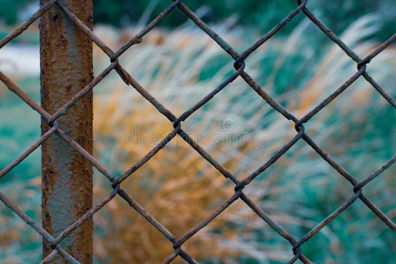 Kleurrijke roestige omheining openlucht stock afbeelding
