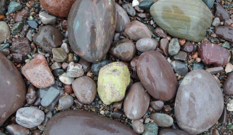 Kleurrijke Rotsen van St Martins Shoreline op de Baai van Fundy stock afbeelding