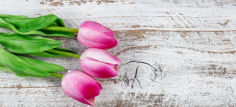Download Kleurrijke Roze En Witte Tulpen Op Rustiek Wit Hout Voor Pasen B Stock Afbeelding - Afbeelding bestaande uit verfraai, rustic: 107704267
