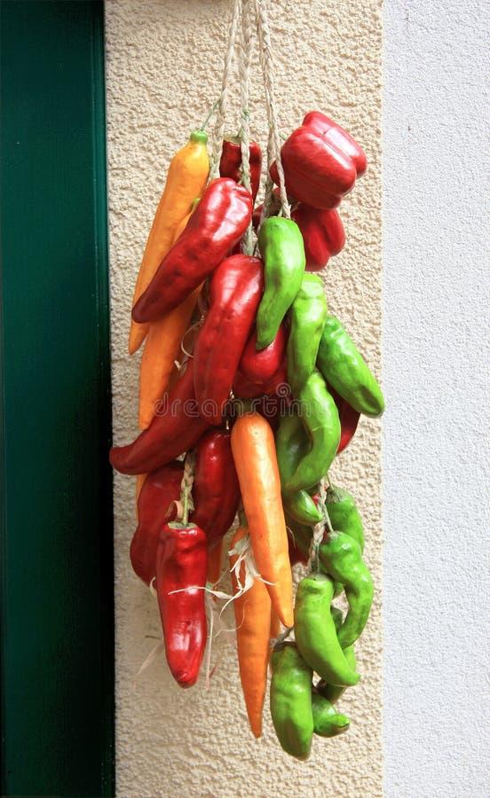 Kleurrijke Spaanse pepers stock afbeelding