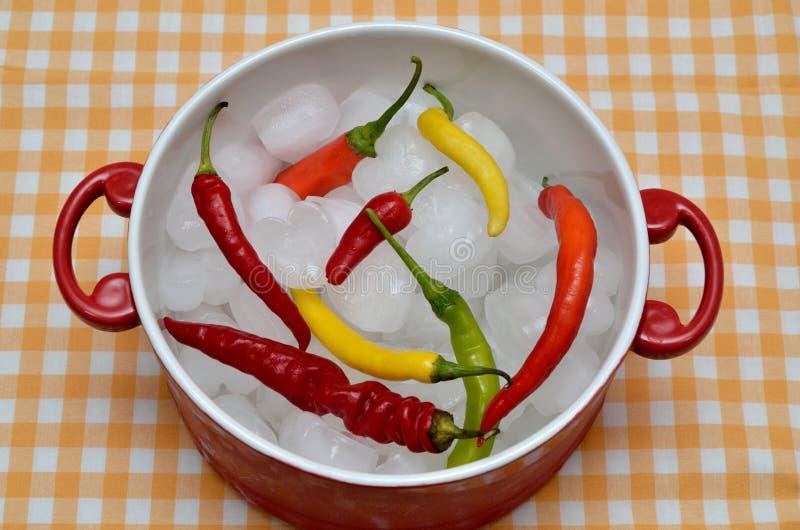 Kleurrijke Spaanse peperspeper op ijs in rode braadpan royalty-vrije stock fotografie