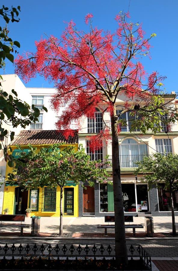 Kleurrijke Spaanse straat op de Costa del Sol stock foto's