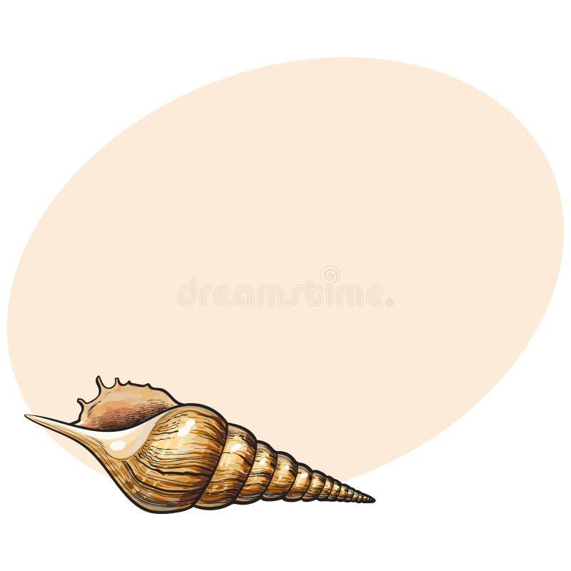 Kleurrijke spiraalvormige kroonslak overzeese shell, de geïsoleerde vectorillustratie van de schetsstijl stock illustratie