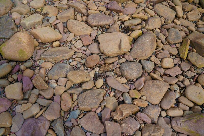 Kleurrijke stenen die op strand leggen royalty-vrije stock foto