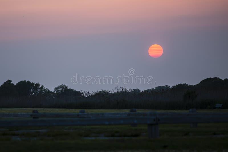 Kleurrijke Strepen op Zon bij Zonsondergang over Park stock afbeelding