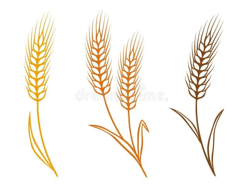Kleurrijke tarwe stock illustratie