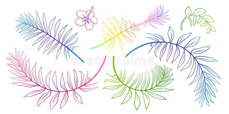 Kleurrijke tropische de kunstsilhouetten van de bladeren vectorhand getrokken lijn vector illustratie