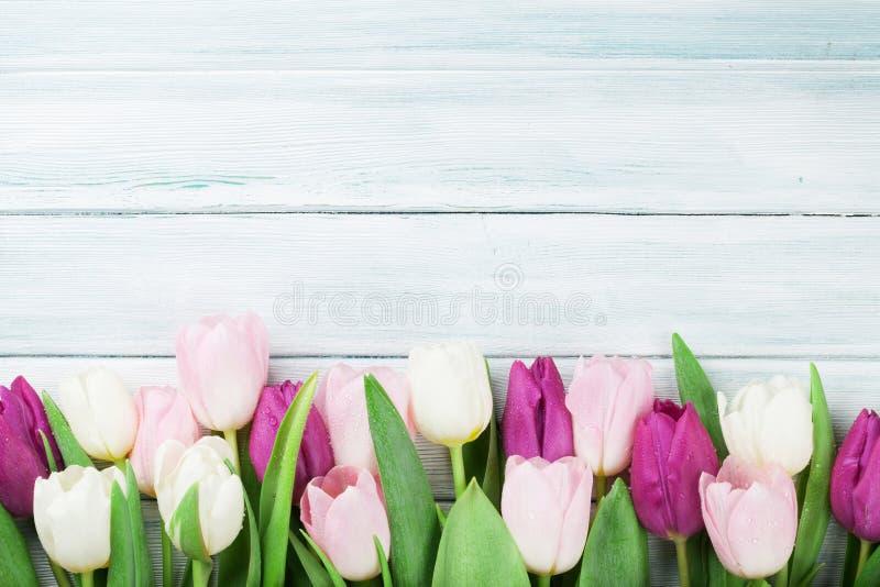 Kleurrijke tulpen royalty-vrije stock foto