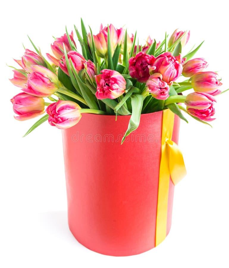 Kleurrijke tulpen in een ronde die hoedendoos, op witte achtergrond wordt geïsoleerd royalty-vrije stock fotografie