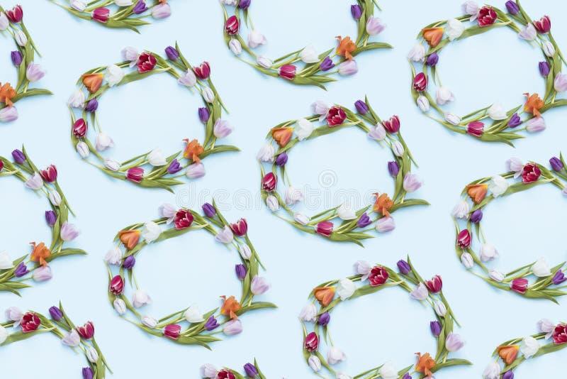 Kleurrijke tulpenkronen royalty-vrije stock foto's