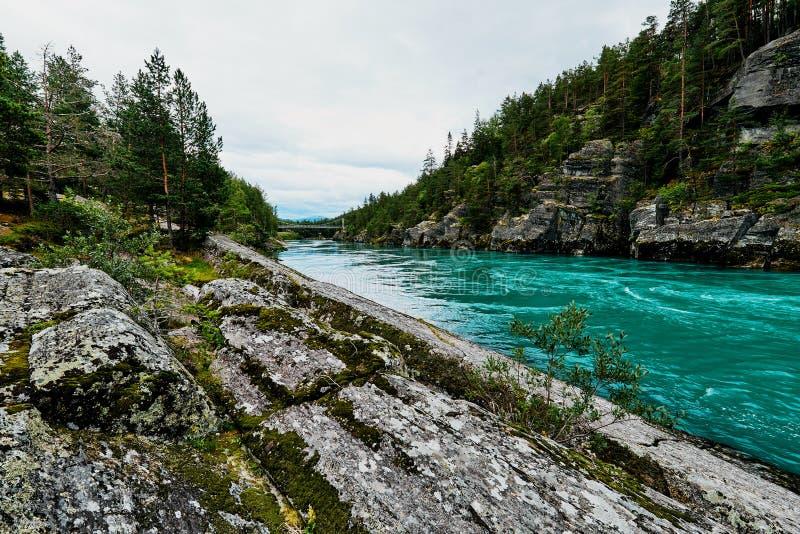 Kleurrijke turkooise rivier en kust met rotsen en bomen in Noorwegen royalty-vrije stock foto