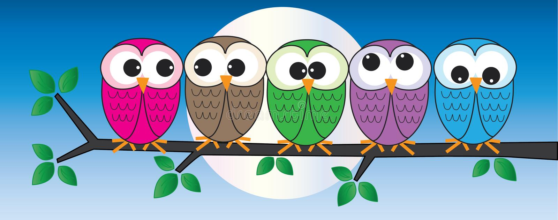 Kleurrijke uilen die op een tak zitten stock illustratie