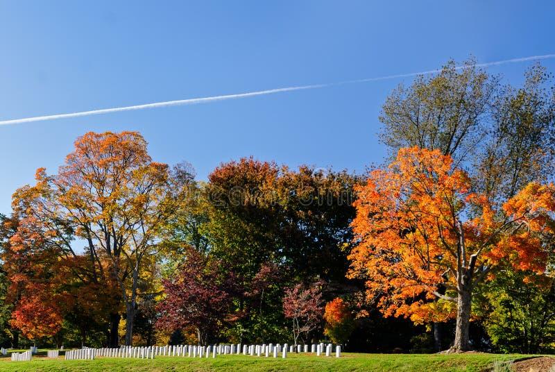 Kleurrijke veranderende bladeren bij de Nationale Begraafplaats van Arlington royalty-vrije stock afbeeldingen
