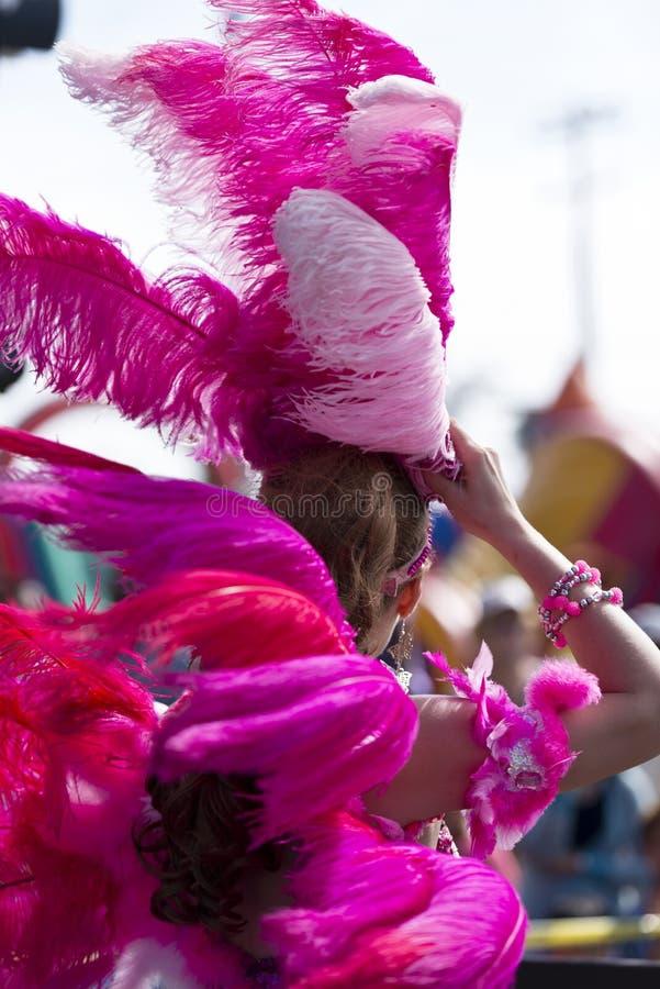 Kleurrijke veren van Braziliaans festival in San Diego stock afbeelding