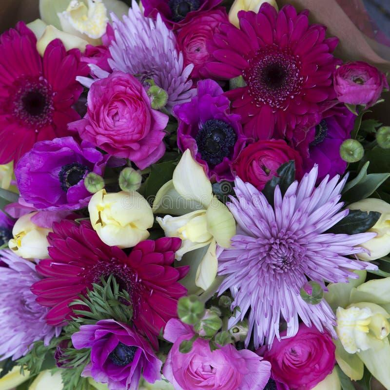 Kleurrijke verscheidenheid van bloemen stock afbeelding