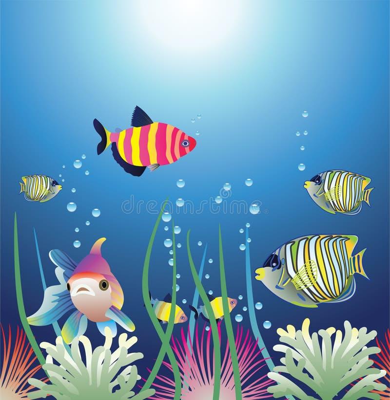 Kleurrijke vissen royalty-vrije illustratie