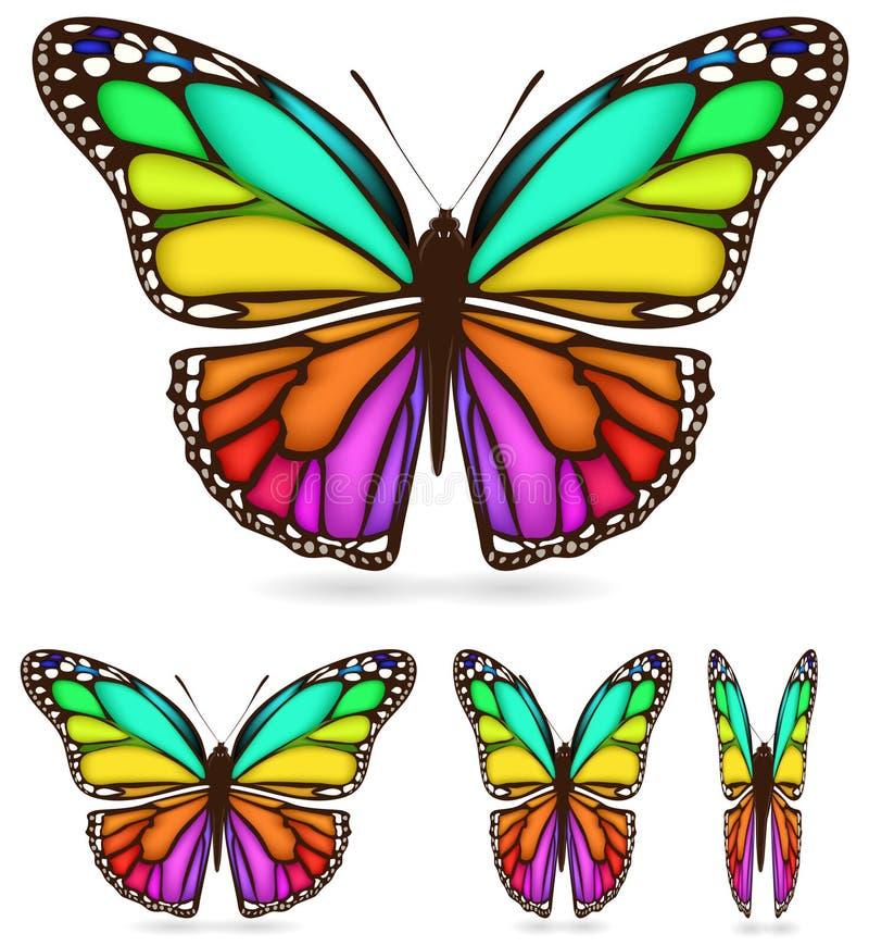Kleurrijke vlinder stock illustratie