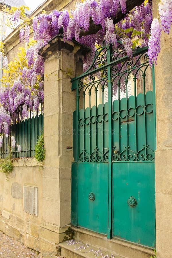 Kleurrijke voorpoort en purpere wisteria Chinon frankrijk royalty-vrije stock afbeeldingen