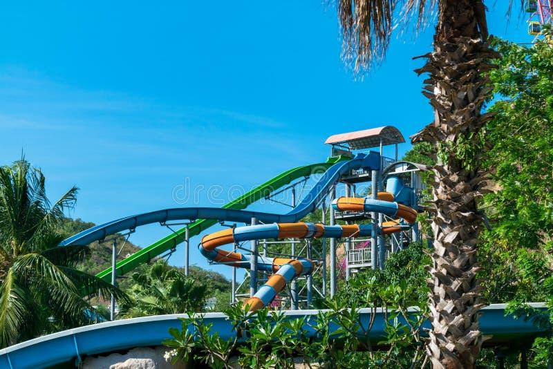 Kleurrijke waterdia in pool met water in een tropisch pretpark met palm stock fotografie