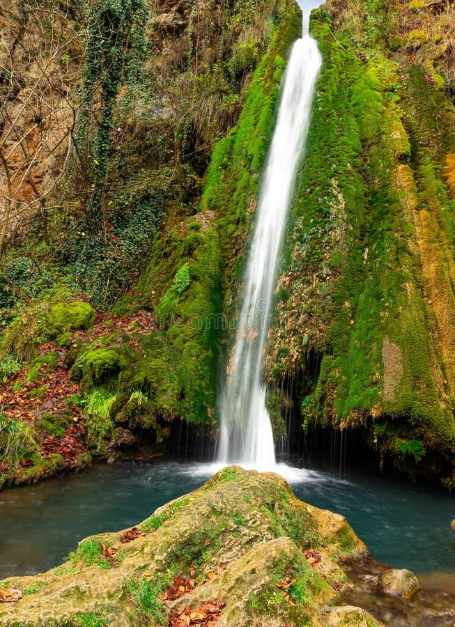 Kleurrijke waterval in de bos vroege herfst met gebladerte stock afbeelding