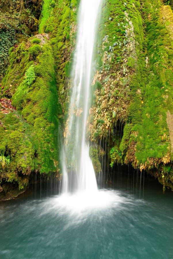 Kleurrijke waterval in de bos vroege herfst met gebladerte stock fotografie