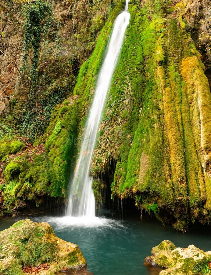 Kleurrijke waterval in de bos vroege herfst met gebladerte royalty-vrije stock afbeelding