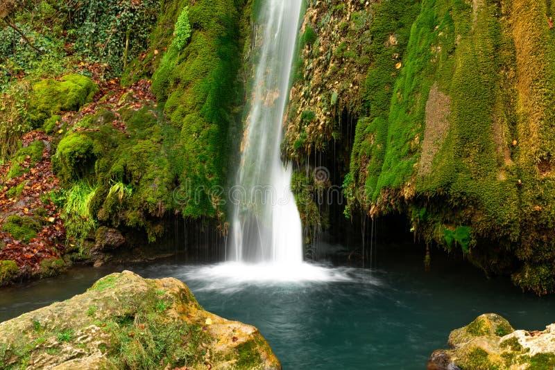 Kleurrijke waterval in de bos vroege herfst met gebladerte stock afbeeldingen