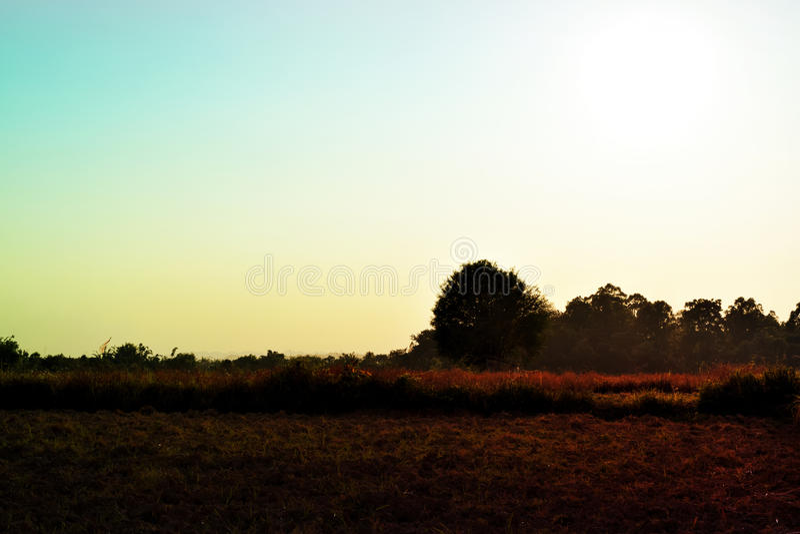 Kleurrijke wolkenhemel en gebiedsweide - uitstekende stijl royalty-vrije stock foto