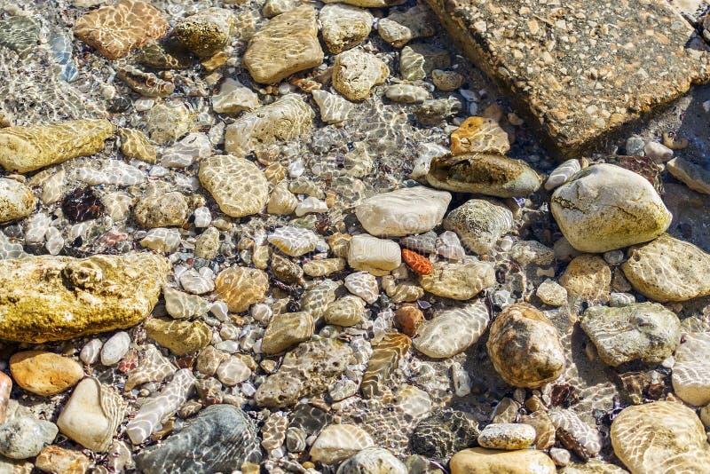 Kleurrijke zeebedding van kiezelstenen en stenen onder het glasheldere zeewater met zonlichtbezinningen royalty-vrije stock foto