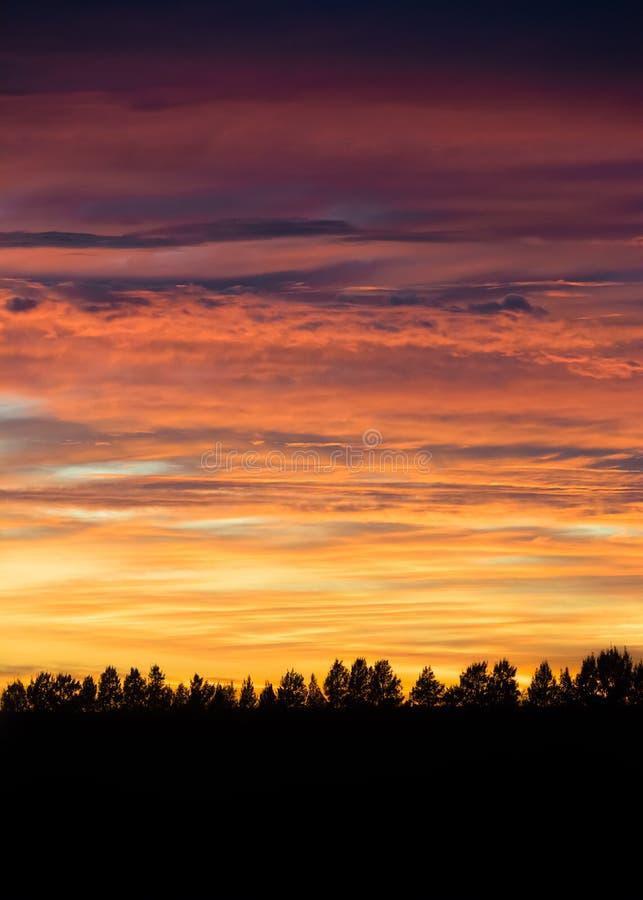 Kleurrijke Zonsopgang in Landelijk Zuid-Australië stock fotografie