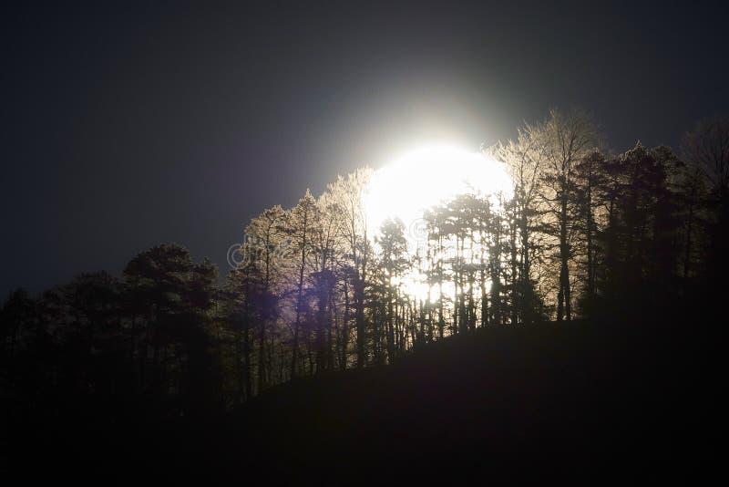 Klibbad fullmåne royaltyfri foto