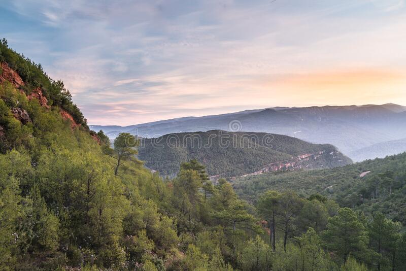 Klify śródziemnomorskie i lasy zdjęcia royalty free