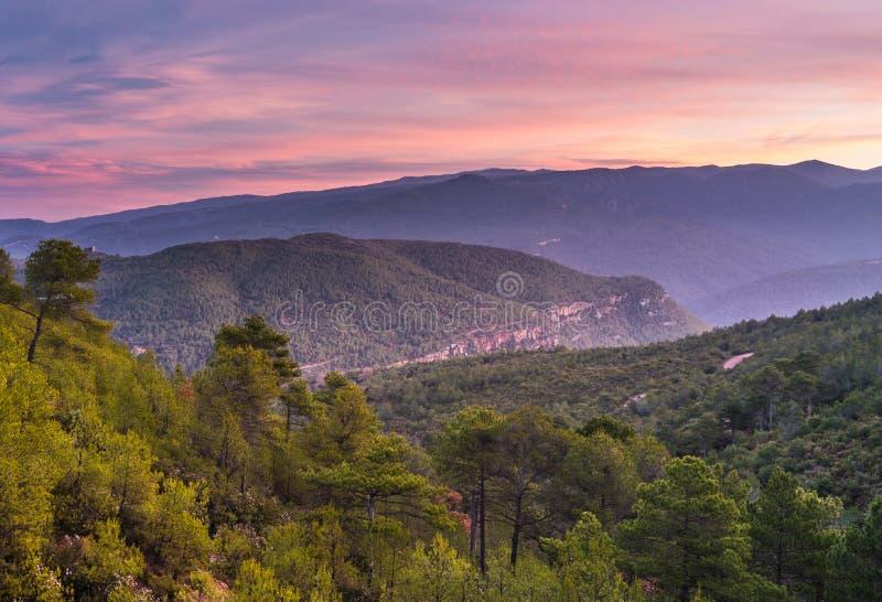 Klify śródziemnomorskie i lasy obraz royalty free