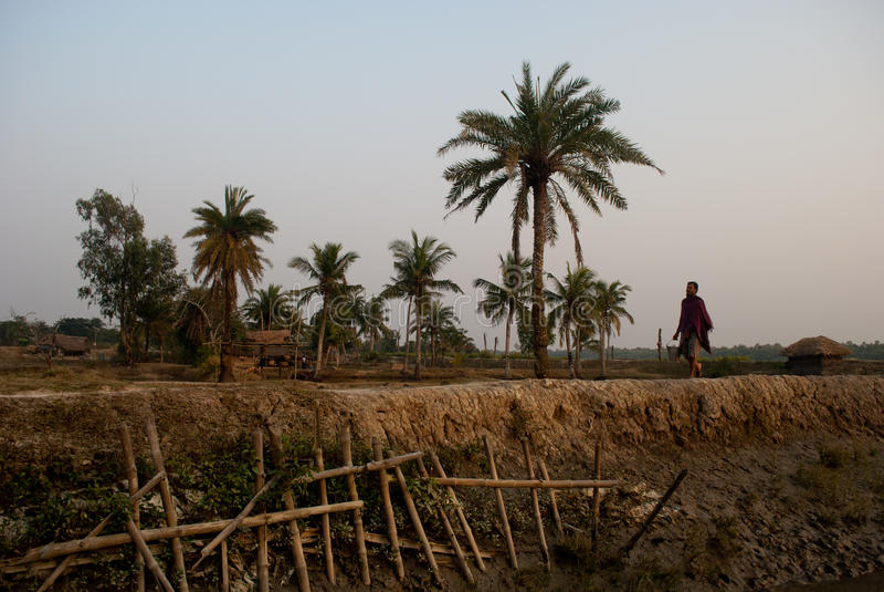 Klimaatverandering in Sundarban, India stock foto's