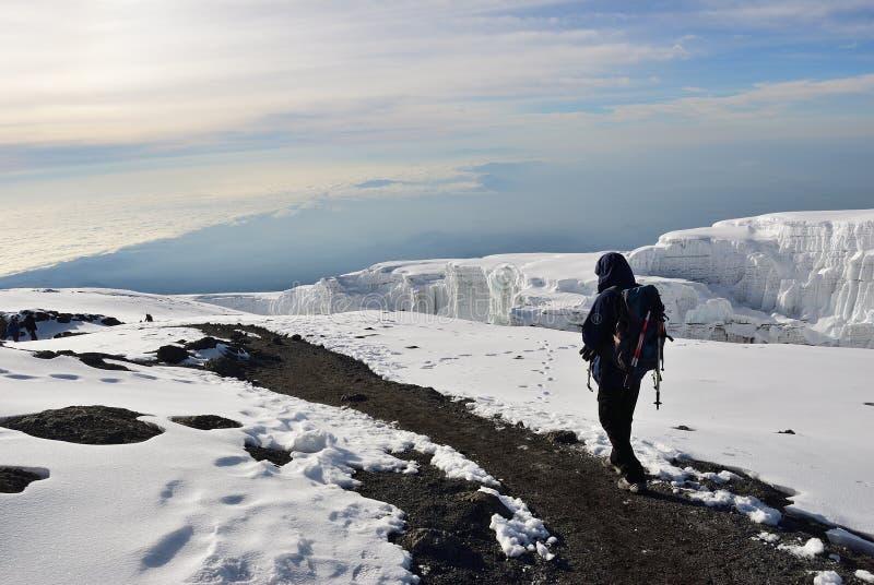 Klimmer bovenop de Kilimanjaro-berg Tanzania, stock fotografie