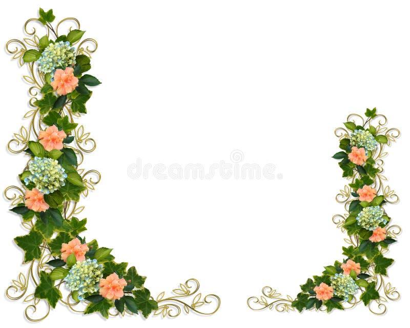 Klimop, Hydrangea hortensia en Hibiscus stock illustratie