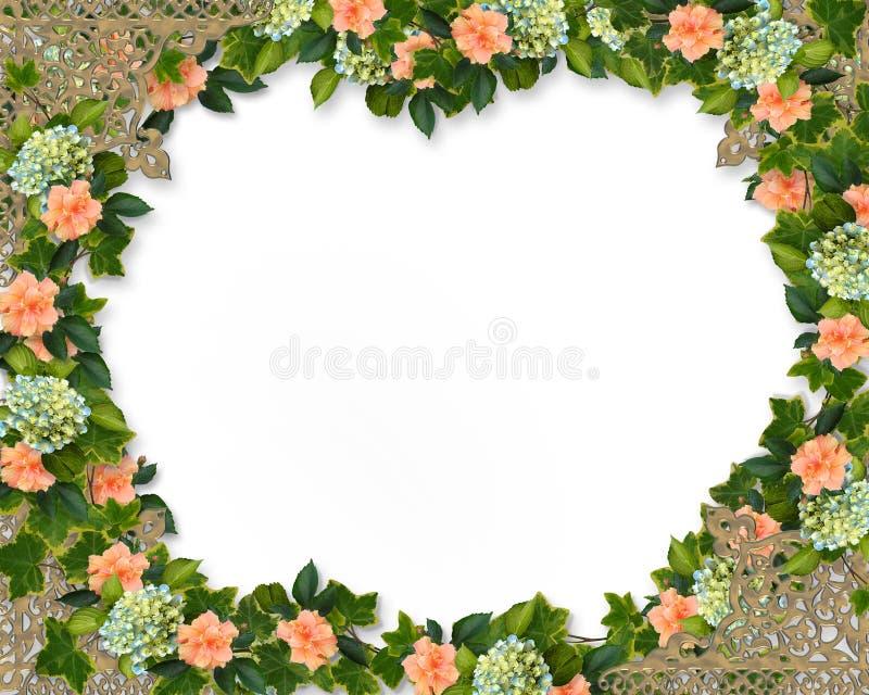 Klimop, Hydrangea hortensia en Hibiscus   royalty-vrije illustratie