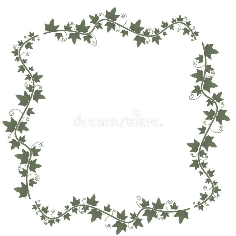 Klimopwijnstokken met groene bladeren Bloemen vectorframe Illustratie groene installatie, takje van een wijnstok royalty-vrije illustratie