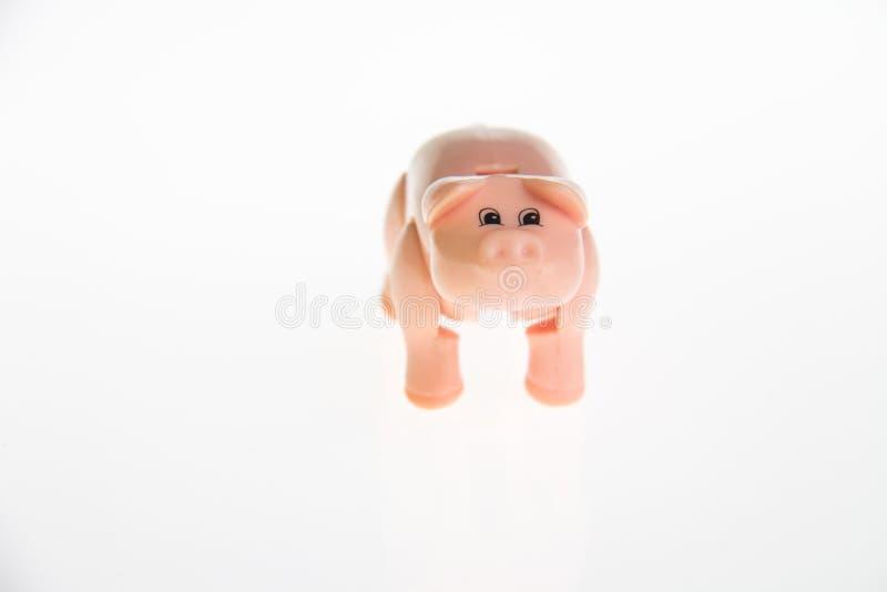 Klingeryt zabawkarska świnia zdjęcie royalty free