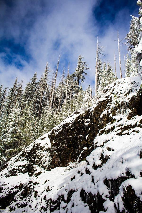 Klip aan de kant van de Sneeuwweg op Mary& x27; s Piekoregon stock foto's