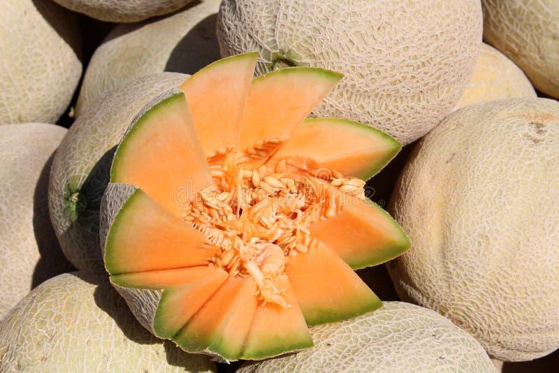 Klipp Artfully cantaloupmelon som visas på bondemarknaden arkivbild